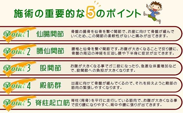 施術の重要な5つのポイント.JPG